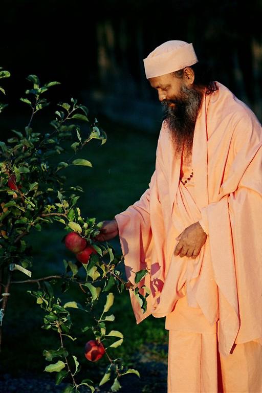 Swami Brahmananda Giri devant des fleurs