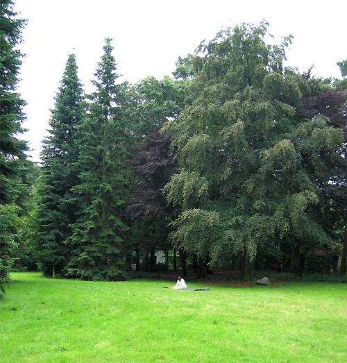 Jardin à l'ashram Kriya Yoga de Sterksel Hollande