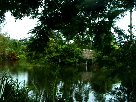 l'ashram de Baba à Homestead, Floride, USA endomagé par le cyclone